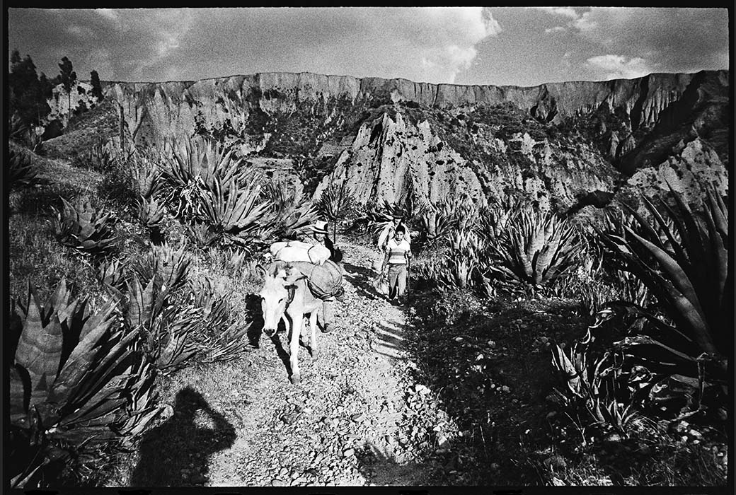 Encounter on the path, Peru 1982